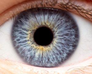 Eye Injury Treatment for Ellicott City Patients