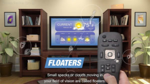 flashers and floaters video